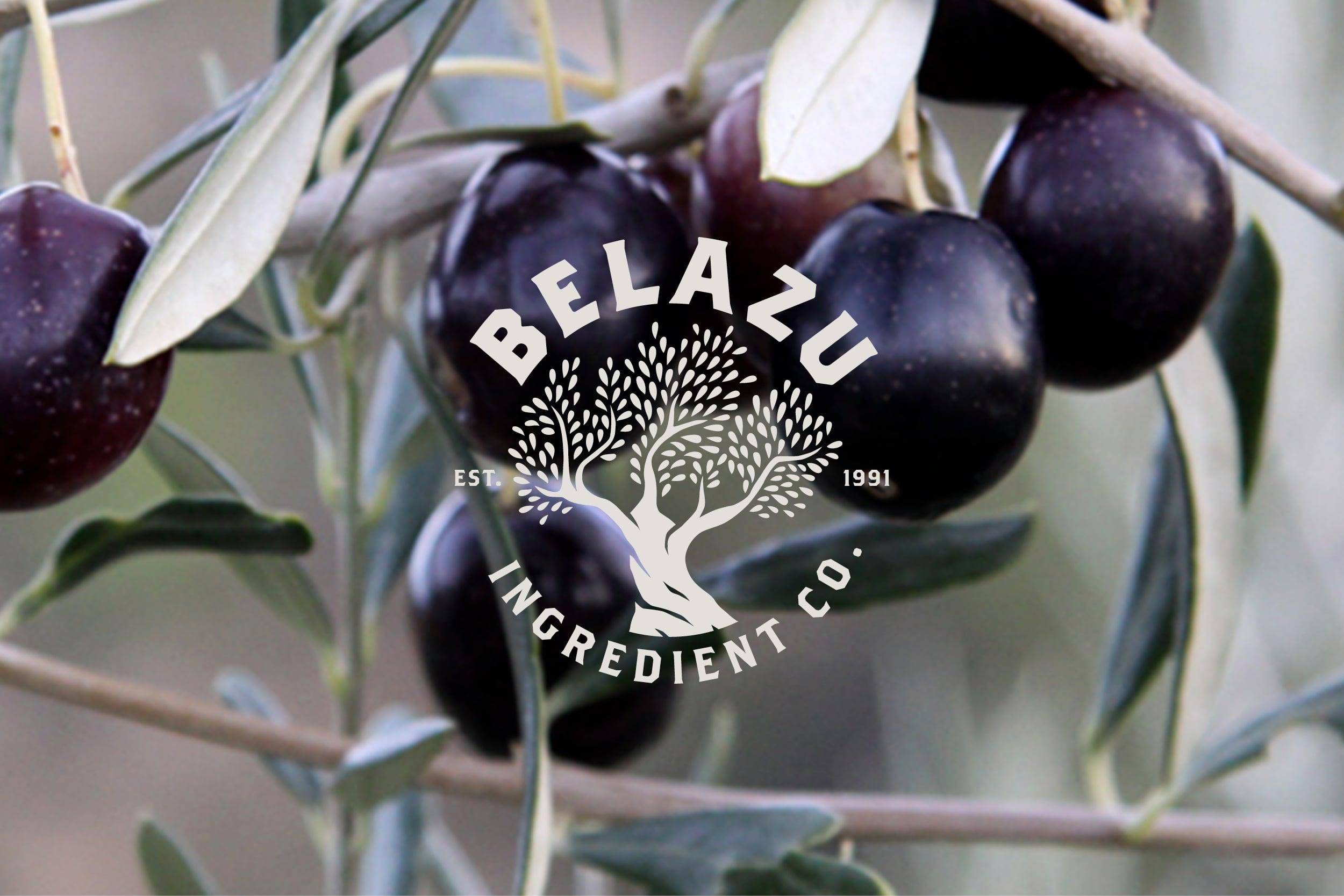 femke_nouters-belazu-rebranding-logo